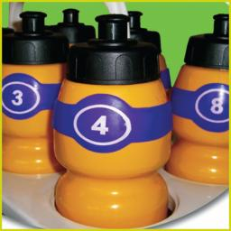 Squad numbered bottle tags